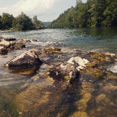 Reka Kolpa v poletnih dneh.